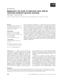 Báo cáo khoa học: Epigenetics: the study of embryonic stem cells by restriction landmark genomic scanning