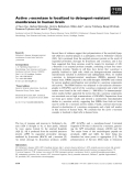 Báo cáo khoa học: Active c-secretase is localized to detergent-resistant membranes in human brain
