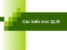 Các kiến trúc QLM