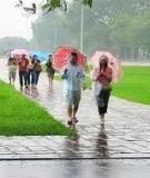 Chụp ảnh dưới trời mưa