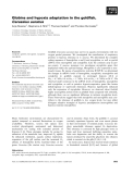 Báo cáo khoa học: Globins and hypoxia adaptation in the goldfish, Carassius auratus