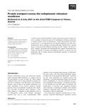 Báo cáo khoa học: Protein transport across the endoplasmic reticulum membrane