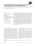 Báo cáo khoa học: An internal ribosome entry site mediates the initiation of soluble guanylyl cyclase b2 mRNA translation