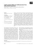 Báo cáo khoa học: Leptin protects H9c2 rat cardiomyocytes from H2O2-induced apoptosis