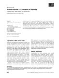 Báo cáo khoa học: Protein kinase Ce: function in neurons