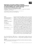 Báo cáo khoa học: Importance of tyrosine residues of Bacillus stearothermophilus serine hydroxymethyltransferase in cofactor binding and L-allo-Thr cleavage Crystal structure and biochemical studies