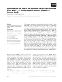 Báo cáo khoa học: Investigating the role of the invariant carboxylate residues E552 and E1197 in the catalytic activity of Abcb1a (mouse Mdr3)