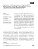 Báo cáo khoa học: Purification and characterization of organellar DNA polymerases in the red alga Cyanidioschyzon merolae