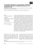 Báo cáo khoa học: Intracellular degradation of somatostatin-14 following somatostatin-receptor 3-mediated endocytosis in rat insulinoma cells