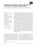 Báo cáo khoa học: Biosynthesis of isoprenoids – studies on the mechanism of 2C-methyl-D-erythritol-4-phosphate synthase