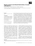 Báo cáo khoa học: Betaine protects urea-induced denaturation of myosin subfragment-1