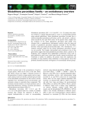 Báo cáo khoa học: Glutathione peroxidase family – an evolutionary overview