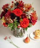 Cắm lọ hoa hồng ấm áp ngày đông