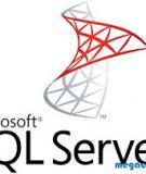 Câu lệnh truy vấn Oracle