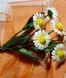 Giản dị mà tinh tế bình hoa cúc ngày thu