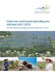 Chiến lược và Kế hoạch Hành động cho Việt Nam (2011-2013)
