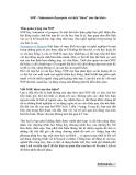 """SOP - Statement of purpose và cách """"khoe"""" sao cho khéo"""
