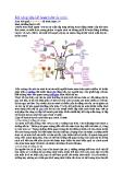 Tìm hiểu về Kỹ năng lãnh đạo