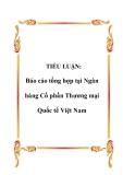 TIỂU LUẬN:  Báo cáo tổng hợp tại Ngân hàng Cổ phần Thương mại Quốc tế Việt Nam