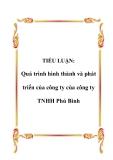 TIỂU LUẬN:  Quá trình hình thành và phát triển của công ty của công ty TNHH Phú Bình