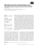 Báo cáo khoa học: DNA binding and partial nucleoid localization of the chloroplast stromal enzyme ferredoxin:sulfite reductase