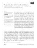Báo cáo khoa học: A vertebrate slow skeletal muscle actin isoform