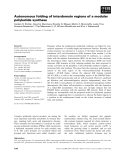 Báo cáo khoa học: Autonomous folding of interdomain regions of a modular polyketide synthase
