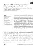 Báo cáo khoa học: Expression and characterization of recombinant 2¢,5¢-oligoadenylate synthetase from the marine sponge Geodia cydonium