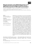 Báo cáo khoa học: Molecular dynamics of the DNA-binding domain of the papillomavirus E2 transcriptional regulator uncover differential properties for DNA target accommodation