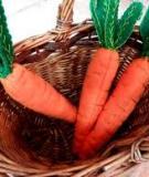 Mẹ khâu cà rốt dễ thương cho bé chơi đồ hàng