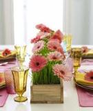 Chậu hoa xinh trang trí bàn tiệc cuối năm