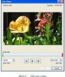 Chèn nội dung multimedia vào tập tin PDF