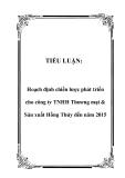 TIỂU LUẬN:  Hoạch định chiến lược phát triển cho công ty TNHH Thương mại & Sản xuất Hồng Thủy đến năm 2015