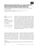 Báo cáo khoa học: Adrenocortical zonation factor 1 is a novel matricellular protein promoting integrin-mediated adhesion of adrenocortical and vascular smooth muscle cells