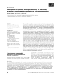 Báo cáo khoa học:  The spread of prions through the body in naturally acquired transmissible spongiform encephalopathies