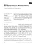 Báo cáo khoa học:  A metabolomics perspective of human brain tumours
