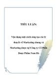TIỂU LUẬN:  Vận dụng một cách sáng tạo các lý thuyết về Marketing chung và Marketing dược tại Công ty Cổ Phần Dược Phẩm Nam Hà