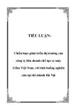 TIỂU LUẬN:  Chiến lược phát triển thị trường của công ty liên doanh chế tạo xe máy Lifan Việt Nam, với tình huống nghiên cứu tại chi nhánh Hà Nội