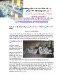 Hướng dẫn cách nuôi chim bồ câu pháp VN1 đạt năng suất cao ?