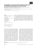 Báo cáo khoa học: Isoquinoline-1,3,4-trione and its derivatives attenuate b-amyloid-induced apoptosis of neuronal cells