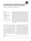 Báo cáo khoa học: Comparative studies of endonuclease I from cold-adapted Vibrio salmonicida and mesophilic Vibrio cholerae