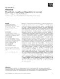 Báo cáo khoa học:  Vitamin C Biosynthesis, recycling and degradation in mammals