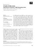 Báo cáo khoa học: A family of killer toxins Exploring the mechanism of ADP-ribosylating toxins