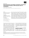 Báo cáo khoa học: Submembraneous microtubule cytoskeleton: biochemical and functional interplay of TRP channels with the cytoskeleton