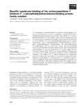 Báo cáo khoa học: Specific membrane binding of the carboxypeptidase Y inhibitor IC, a phosphatidylethanolamine-binding protein family member