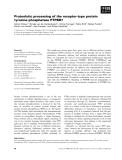 Báo cáo khoa học: Proteolytic processing of the receptor-type protein tyrosine phosphatase PTPBR7