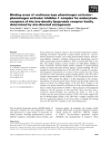 Báo cáo khoa học: Binding areas of urokinase-type plasminogen activator– plasminogen activator inhibitor-1 complex for endocytosis receptors of the low-density lipoprotein receptor family, determined by site-directed mutagenesis