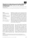 Báo cáo khoa học: Mycobacterium tuberculosis secreted antigen (MTSA-10) modulates macrophage function by redox regulation of phosphatases