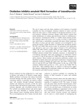 Báo cáo khoa học: Oxidation inhibits amyloid fibril formation of transthyretin