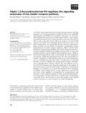Báo cáo khoa học: Alpha 1,3-fucosyltransferase-VII regulates the signaling molecules of the insulin receptor pathway